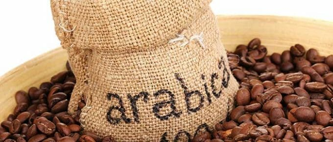 Arabica coffee beans in a bag