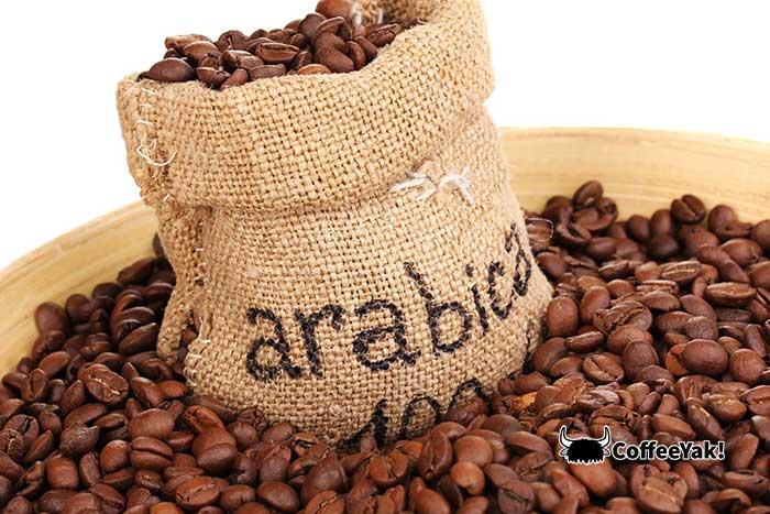 Arabica coffee beans in a bag